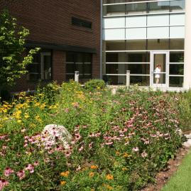 Oakwood Hospital and Medical Center