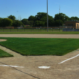 UAW–Ford Baseball Fields